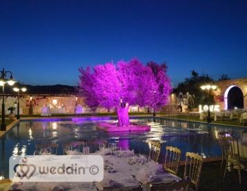 Wedding Dj by Missirlis Giorgio
