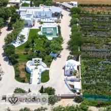 The Greek Beauty Villa