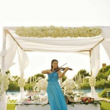 Violin Events music